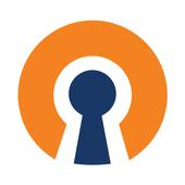 易聯Ovpn - OpenVPN軟體插件 (跨區)